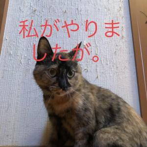2watashiga